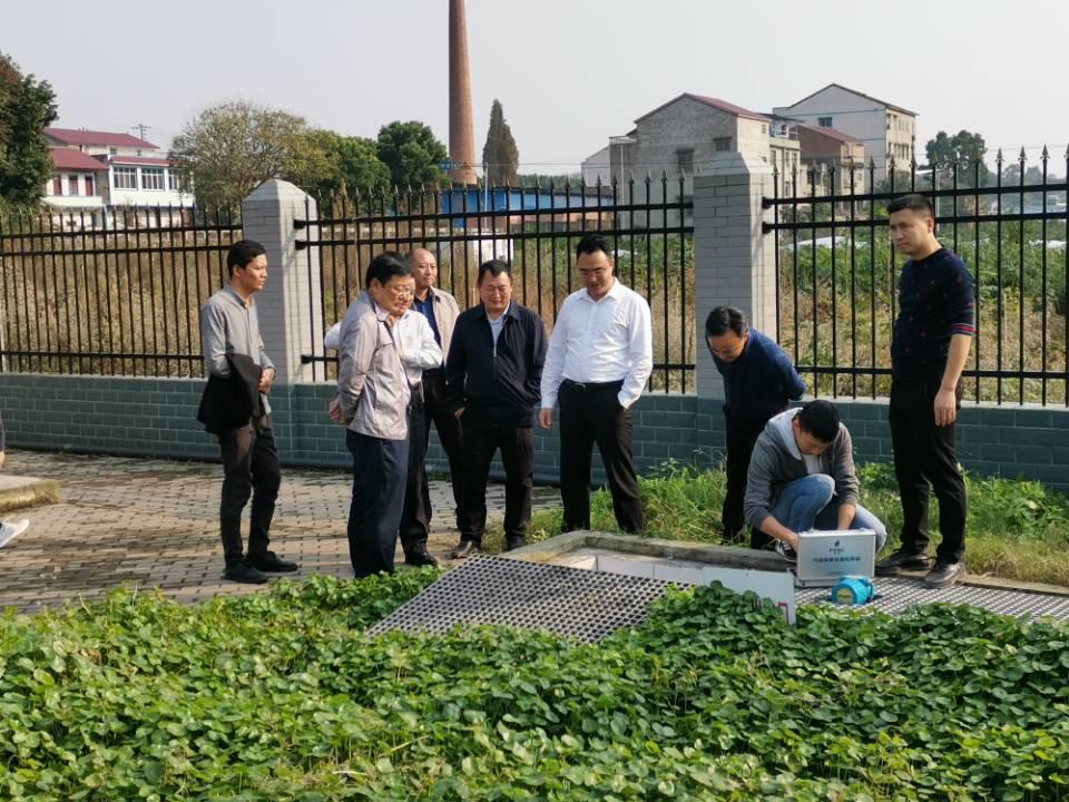 内江市领导调研乌龙河(市中区段)河长制工作推进情况