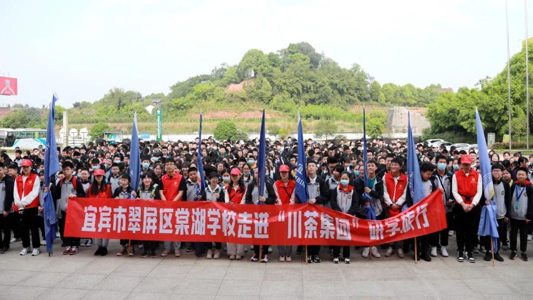 翠屏棠外开展研学旅行活动走进川茶集团,品茶品味品人生